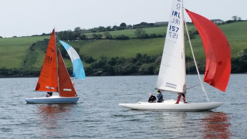 Kinsale Keelboat Regatta - photo © Michele Kennelly