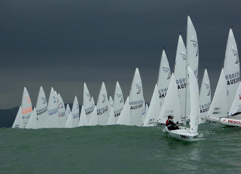 Flying Fifteen NZ Championship in Napier - photo © Jonny Fullerton