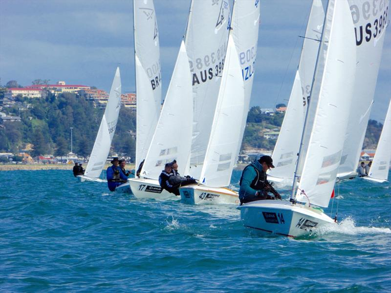 Fleet round the top mark on day 3 of the Flying Fifteen Worlds at Napier - photo © Jonny Fullerton