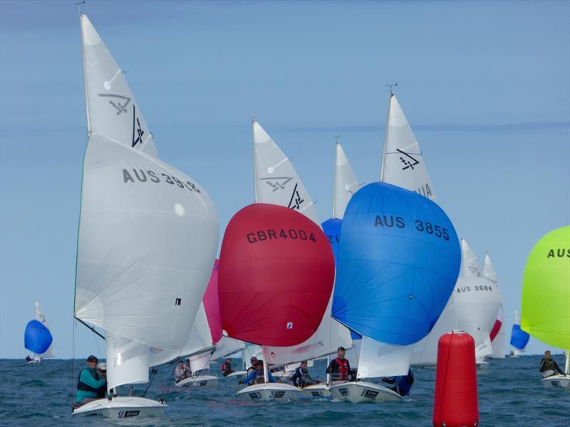 Gate rounding on day 3 of the Flying Fifteen Worlds at Napier - photo © Jonny Fullerton