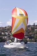 Cavalier 28 'Scuttlebutt' on day two of the Sydney Harbour Regatta - photo © Andrea Francolini