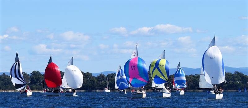 Gippsland Lakes trailable fleet at the Festival of Sails - photo © Christie Arras