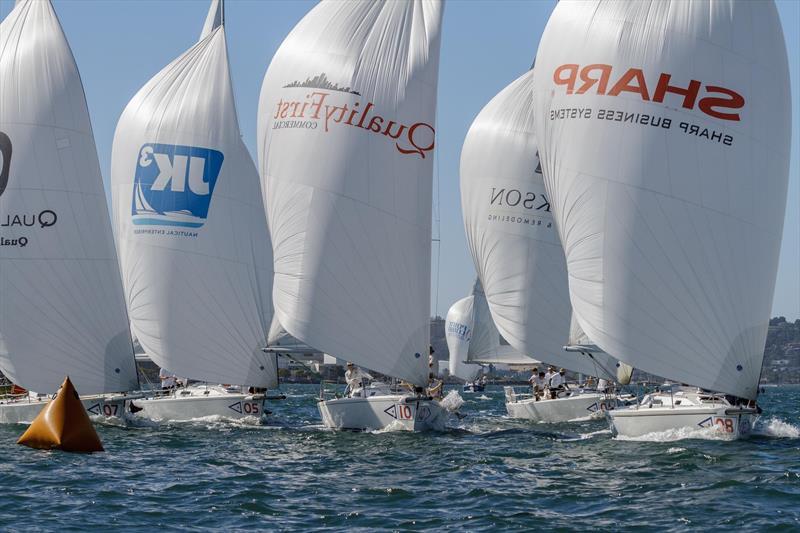 Riding high at the Lipton Cup