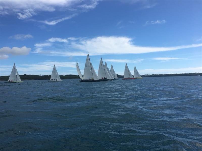 2017 Bromby/Murphy Three-peat Bermuda J/105 Regatta - Day 2