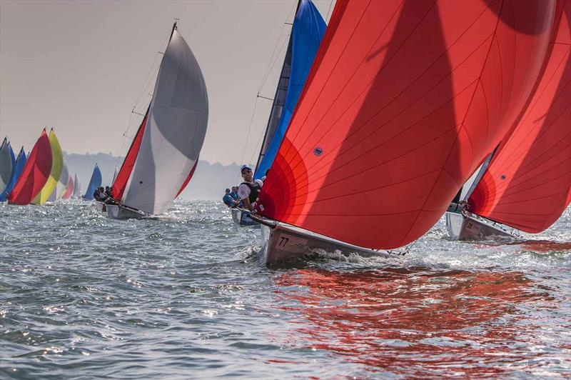Tasmania's Difficult Women (Rob Gough) on day 2 of the SB20 Worlds at Cowes - photo © Jennifer Burgis