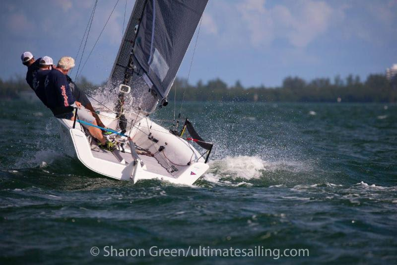 2017-2018 Melges 20 Miami Winter Series - Rob Wilber, CINGHIALE - photo © Sharon Green / ultimatesailing.com