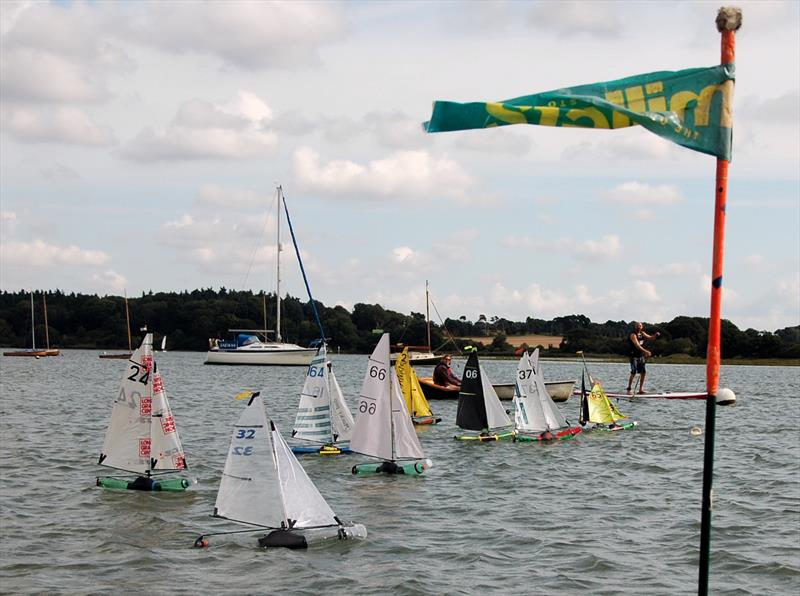Waldringfield Bottle Boat Championship - photo © Roger Stollery