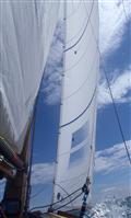 North Sails XOD RHJ-7 Jib