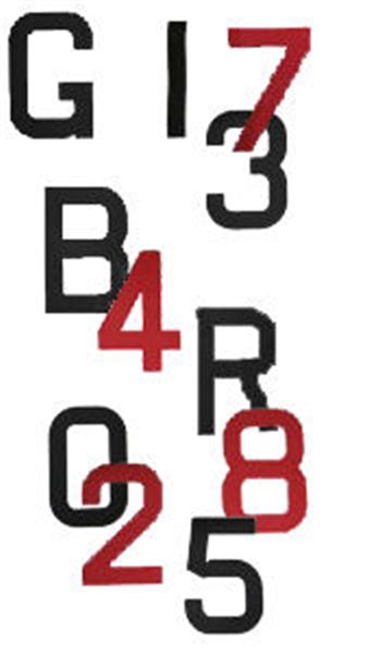 300mm Sail Numbers