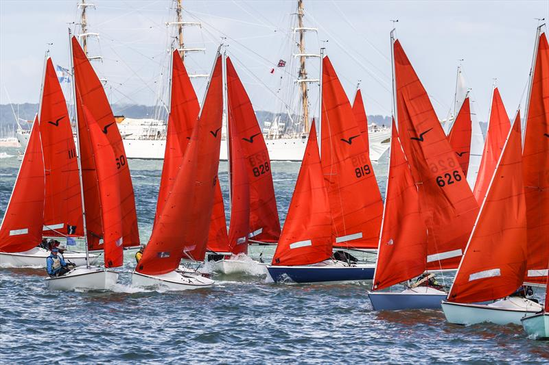 The Squib fleet at Lendy Cowes Week 2017 - photo © Tom Gruitt