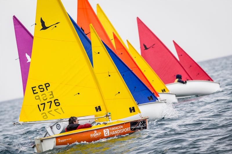 Hansa fleet on day 3 at Sail Racing PalmaVela - photo © Sail Racing PalmaVela / Maria Muina