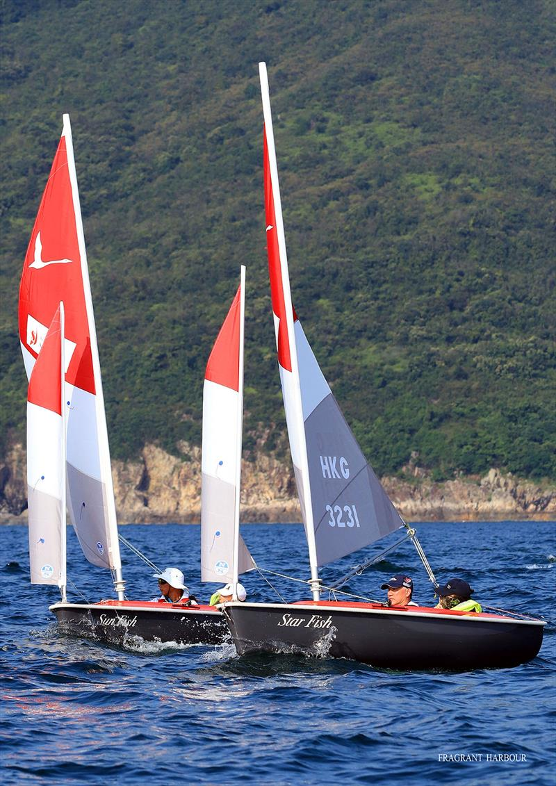 Hansa 303s Star Fish and Sun Fish - Bart's Bash Regatta 2019 photo copyright Fragrant Harbour taken at Hebe Haven Yacht Club and featuring the Hansa class