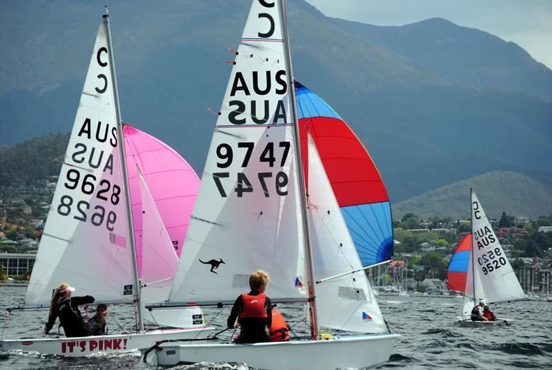 Audi Showdown At The Royal Yacht Club Of Tasmania
