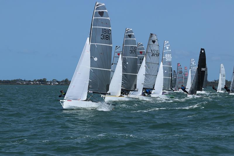 Race 8 - 57th Cherub Australian Championship - photo © Andrew Glassock