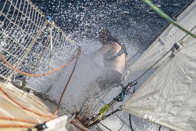 Dario on the bow - Clipper Round the World Race - photo © Clipper Race