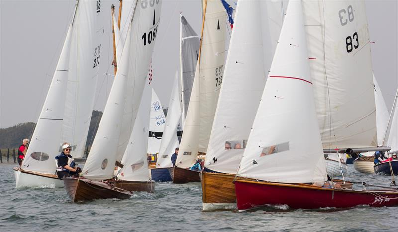 Bosham Classic Boat Revival - photo © Jonathan Hoare