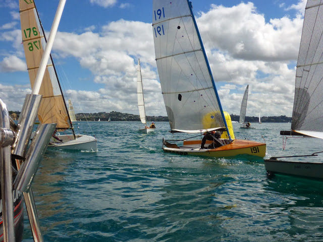 Farr 3.7 New Zealand National Championships at Manly Sailing Club - photo © Chris Mitchell