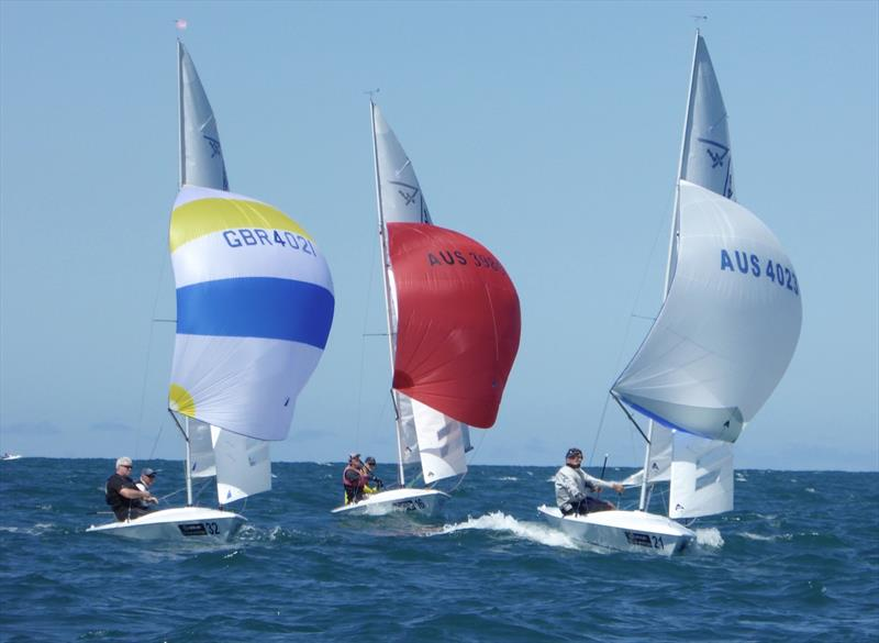The leaders during race 5 on day 4 of the Flying Fifteen Worlds at Napier - photo © Jonny Fullerton