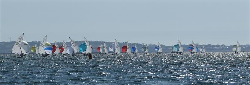 Flying Fifteen British Championship 2018 at Strangford Lough - photo © Simon McIlwaine / www.wavelengthimage.com