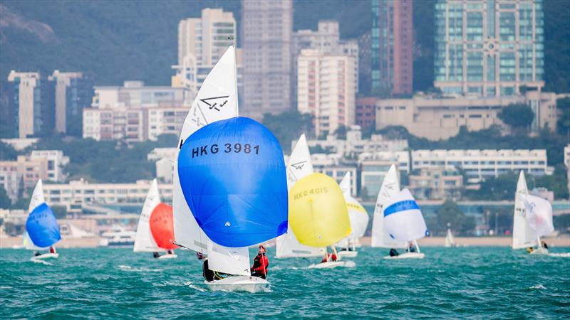Hong Kong Flying Fifteen Class Championship 2020 - photo © Panda Man / Takumi Images