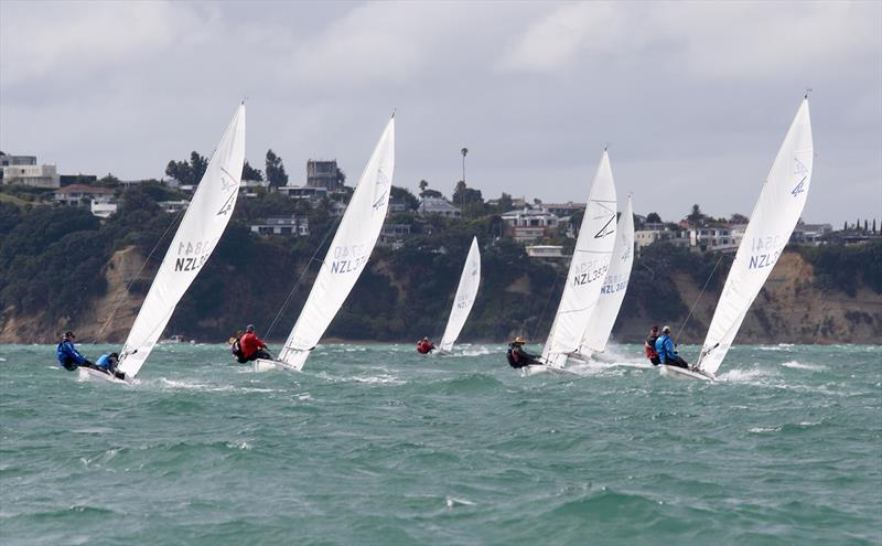 2019 Flying Fifteen New Zealand National Championships - photo © Chris Fields