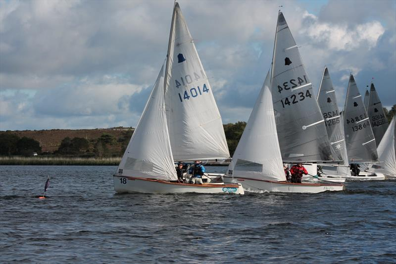 GP14s at Frensham Pond photo copyright Stephanie Videlo taken at Frensham Pond Sailing Club and featuring the GP14 class