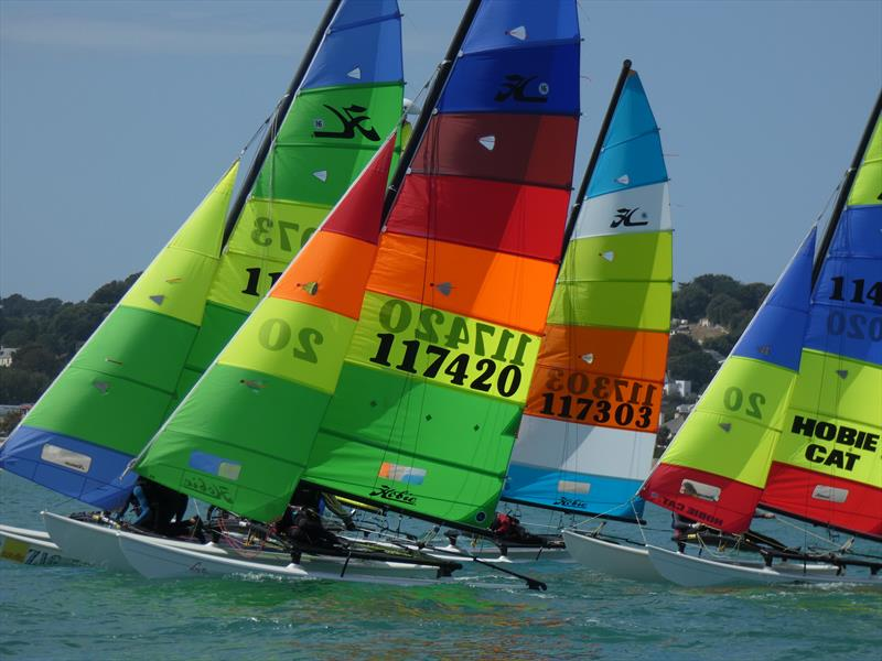 Hobie 16s during the RCIYC Hobie Fleets Love Wine 'Summer Breeze' series - photo © Elaine Burgis