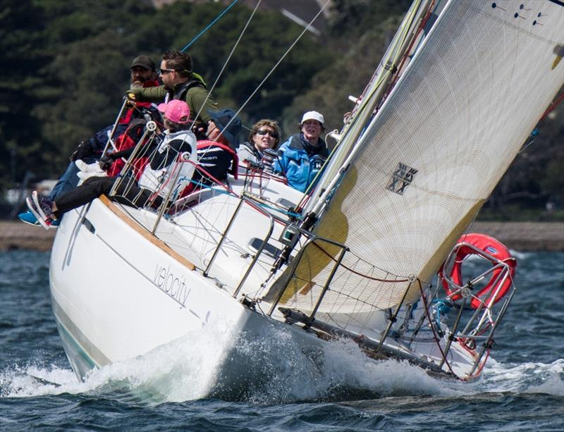Velocity Meredith from MYC - Ladies of the Sea Coaching Regatta 2019 - photo © Margaret Fraser-Martin