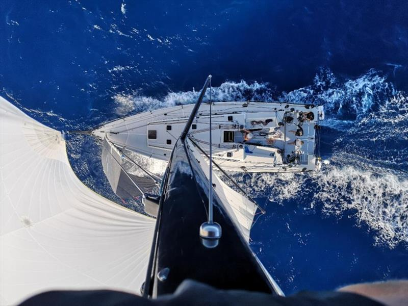 Atop the mast - bluewater racing on board Pata Negra where the crew are enjoying blasting through the Atlantic swell - RORC Transatlantic Race day 11 photo copyright Pata Negra taken at Royal Ocean Racing Club and featuring the IRC class