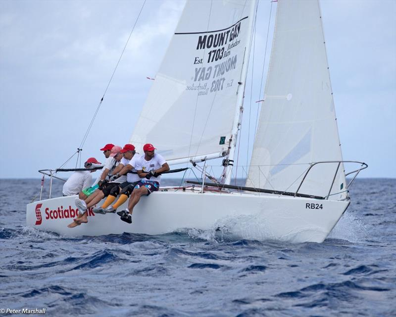 Cyril Lecrenay's team on Bunga Bunga sailed a good series to finish second overall - Barbados Sailing Week 2018 photo copyright Peter Marshall / BSW taken at Barbados Cruising Club and featuring the J/24 class