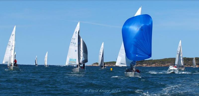 J24 NSW Championships photo copyright David Knapp taken at Cronulla Sailing Club and featuring the J/24 class