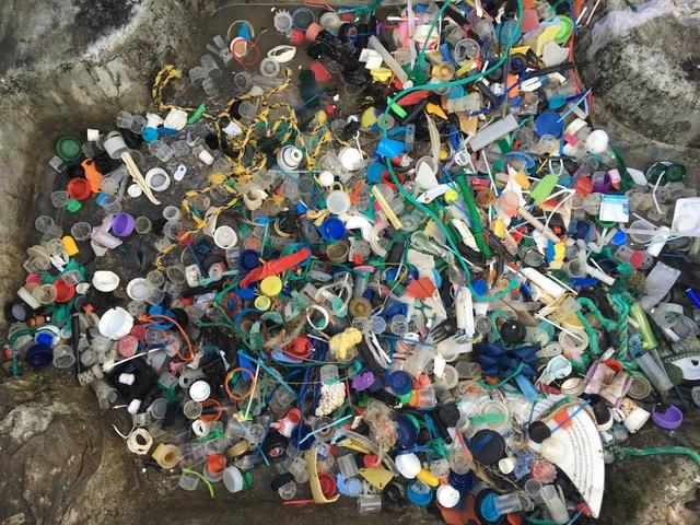 The amount of plastic Gael collected on a small section of Witterings Beach - photo © Gael Pawson