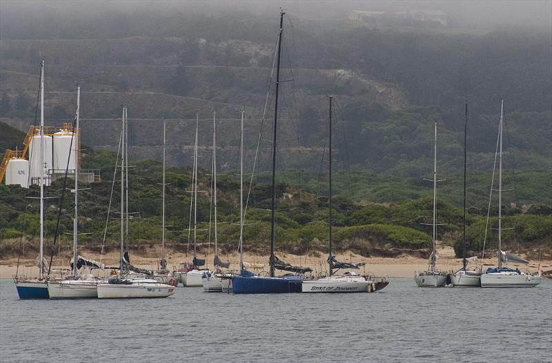 Raft up in Grassy Harbour (King Island) is not going to happen in 2020. - photo © John Curnow