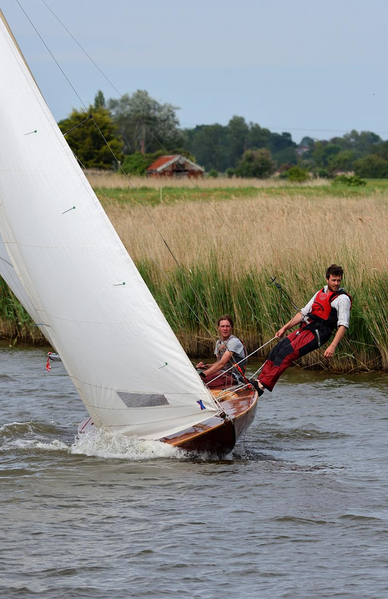 Three Rivers Race 2019 photo copyright Neil Foster Photography / www.wfyachting.com taken at Horning Sailing Club and featuring the Norfolk Punt class