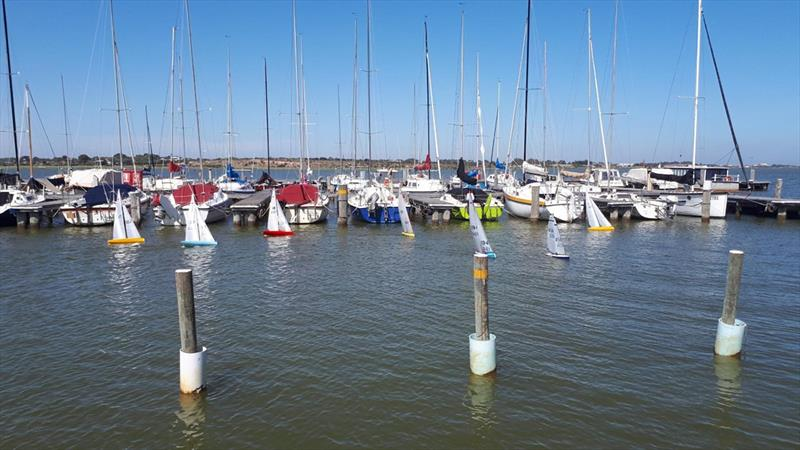 The fleet raced inside the club's marina providing great spectator viewing - Radio-Controlled Yacht Regatta 2019 photo copyright Louise Edwards taken at Goolwa Regatta Yacht Club and featuring the Radio Sailing class