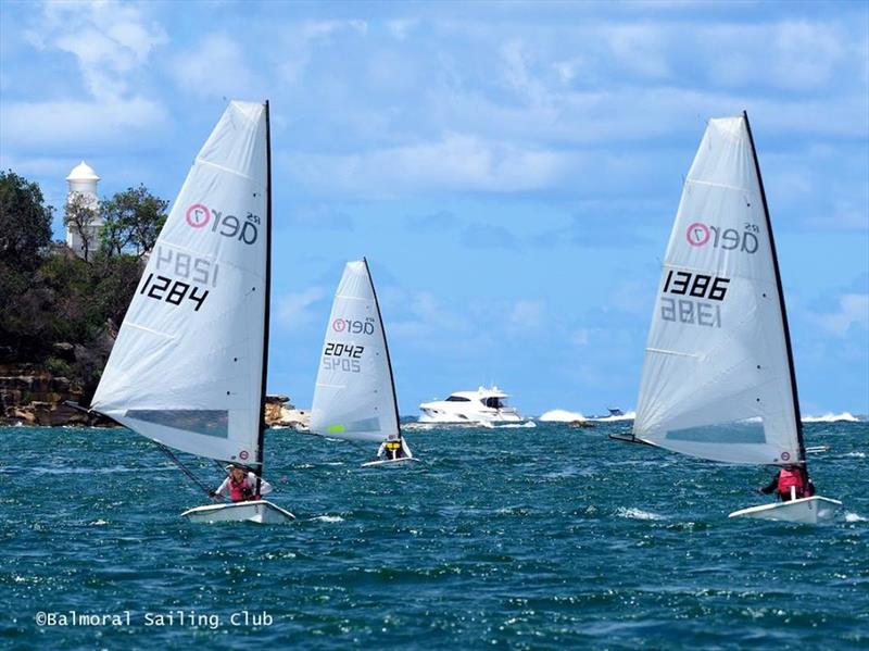 RS Aero New South Wales State Championships at Balmoral SC - photo © Balmoral Sailing Club