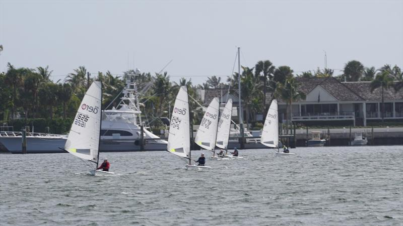 RS Aero North American Midwinters at Palm Beach Sailing Club - photo © Palm Beach Sailing Club