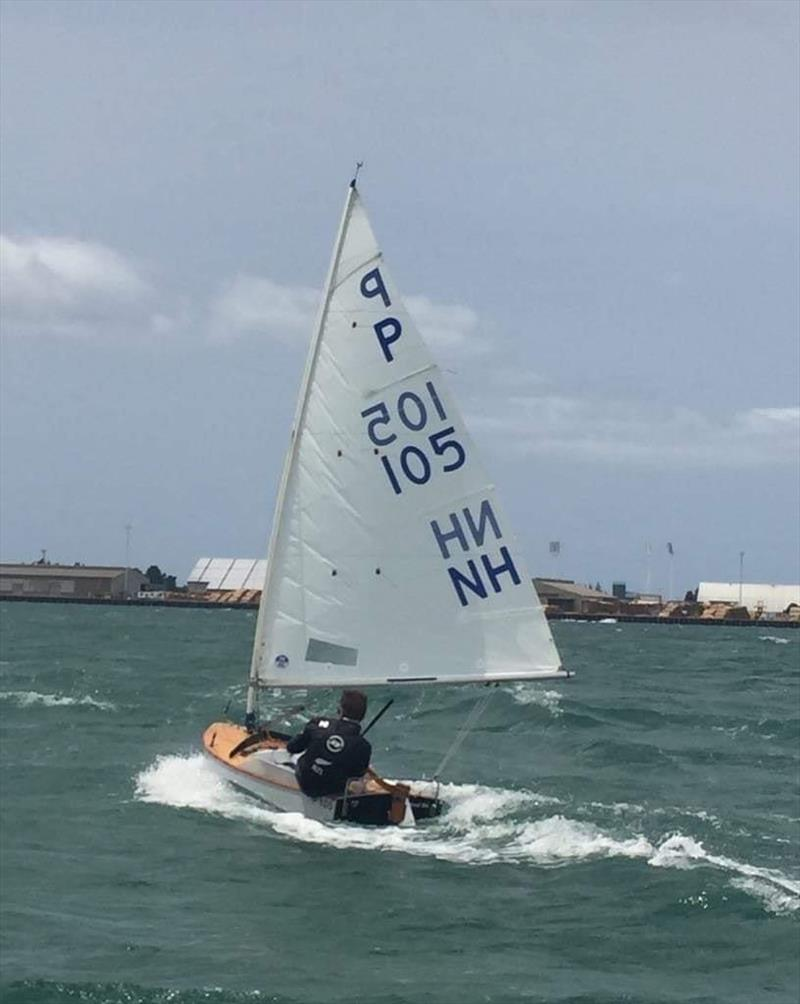 Harrison Loretz -  P class - Tanner Cup - Tauranga Yacht and Power Boat Club - January 2019 photo copyright Tauranga Yacht and Power Boat Club taken at  and featuring the  class