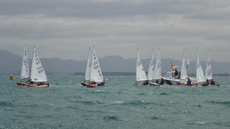 Day 1 - P class - Tauranga Cup - Tauranga Yacht and Power Boat Club - January 2019 - photo © Tauranga Yacht and Power Boat Club