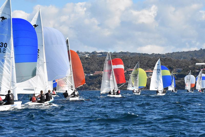 SA Summer of Sail Launch Regatta - photo © Harry Fisher