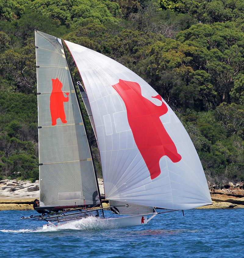 Bird and Bear showed good form during 18ft Skiff NSW Championship Race 5 - photo © Frank Quealey