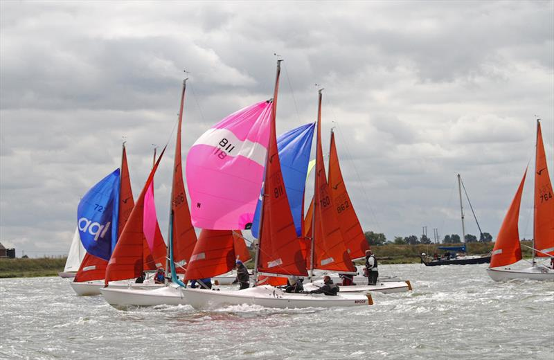 Closer than close in the popular Squib class at Burnham Week that celebrates its 50th anniversary this year - photo © Roger Mant