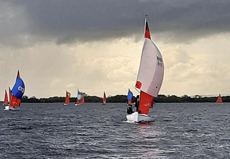 Irish Squib Inland Championship at Lough Derg