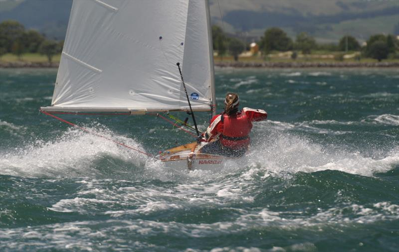 Kelly Barnes sailing #1033 Sensation at the 2005 Tauranga Nationals. A well-named boat for that moment. - photo © Kel Martin