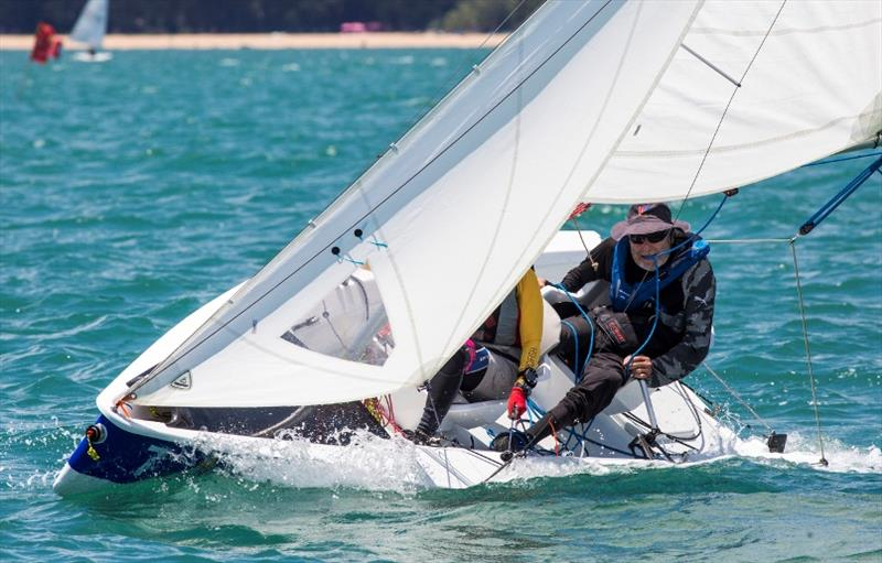A focussed Russel Vollmer in the S\V14 class, Day 3, Top of the Gulf Regatta 2019 photo copyright Guy Nowell / Top of the Gulf Regatta taken at Ocean Marina Yacht Club and featuring the SV14 class